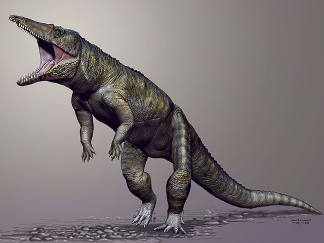 Carnufex carolinensis, the Carolina Butcher