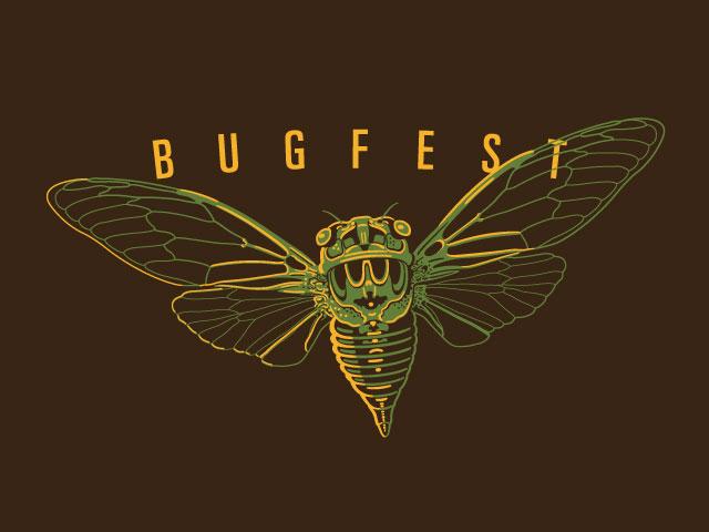 BugFest cicada 2015