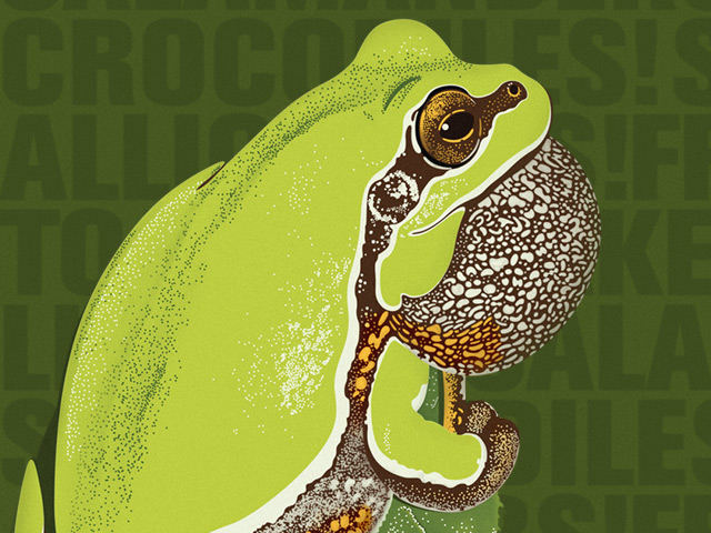 Reptile and Amphibian Day graphic with Pine Barrens Treefrog