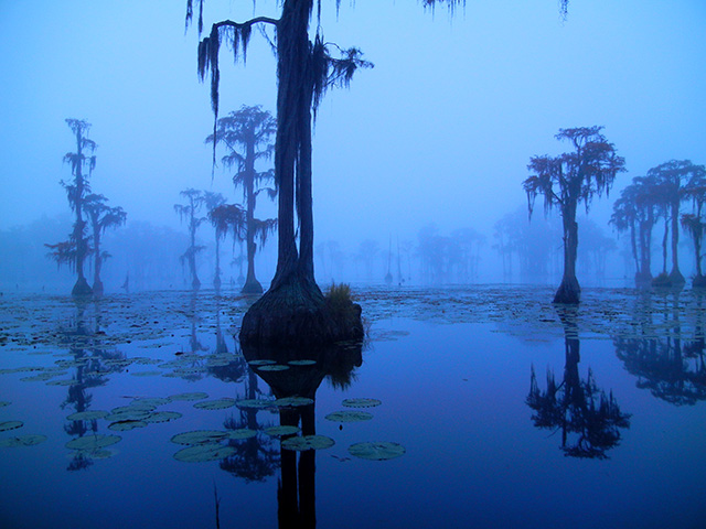Banks Lake Foggy Morn by Richard Mathis.
