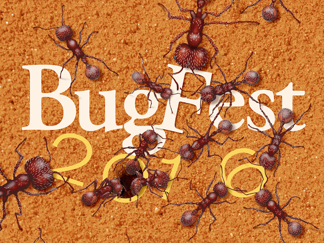 BugFest 2016 at the North Carolina Museum of Natural Sciences