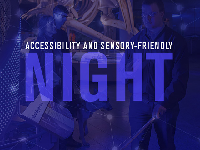 Accessibility and Sensory-friendly Night graphic