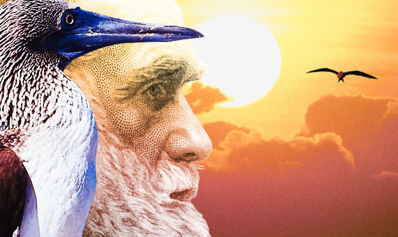 Darwin Day banner, featuring Darwin, a blue-footed booby, and a magnificent frigate.