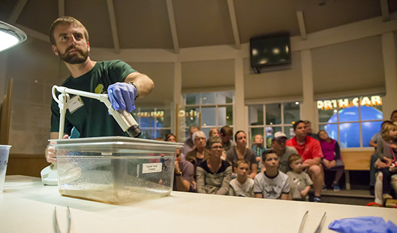 Museum Educator Adrian Yirka presenting on frogs in Windows on the World. Photo: Matt Zeher/NCMNS