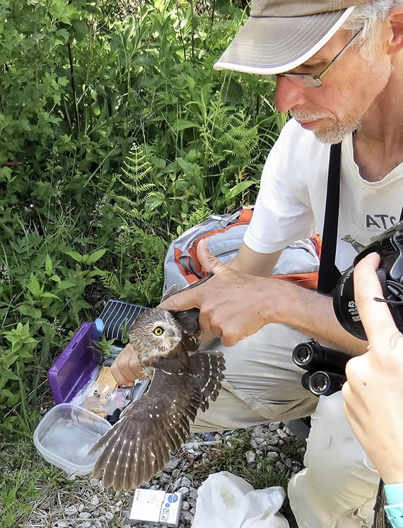 John Gerwin with an owl