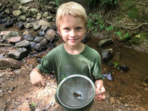 Boy at stream with strainer and caught bug