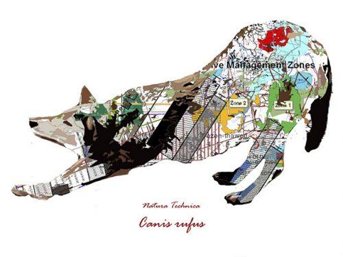 "Matt Zigler's ""Natura Technica"" featured at Museum's Nature Art Gallery in August"