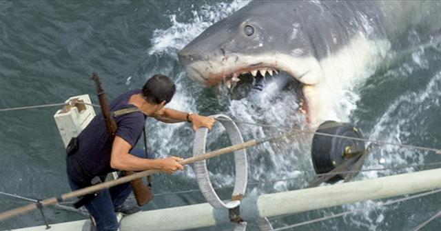 Jaws - screen shot