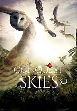Conquest of the Skies 3D - movie poster