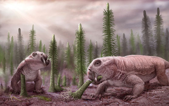 Mass Extinctions Led to Low Species Diversity, Dinosaur Rule | Programs and Events Calendar