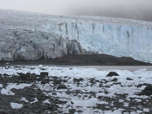 Ecology_Glacier_Livingston_Island