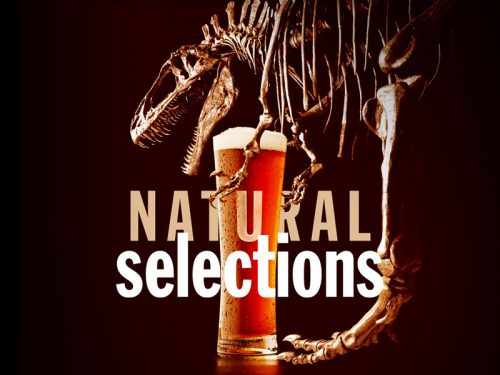 Enjoy science with a beer chaser at Museum's Natural Selections event, Aug. 17