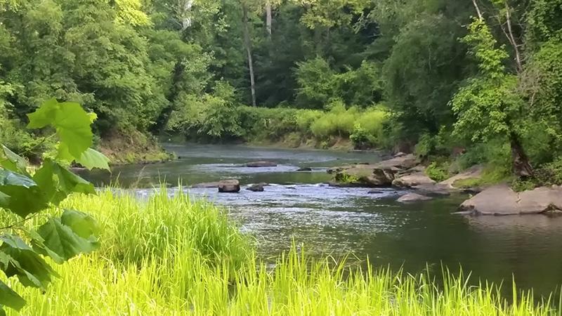 Upper Neuse River. Photo courtesy of Matthew Starr.