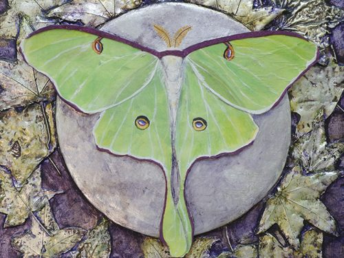 """""""Icons of the Natural World"""" showing at Museum's Nature Art Gallery in September"""