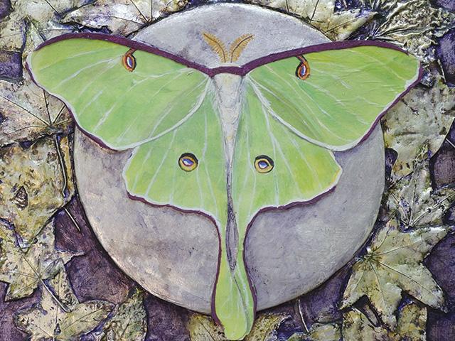 Luna Moth by Lind Hollingsworth
