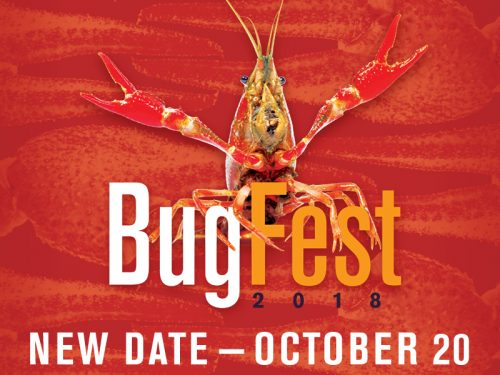 Crayfish featured at rescheduled NC Museum of Natural Sciences' BugFest, Oct. 20