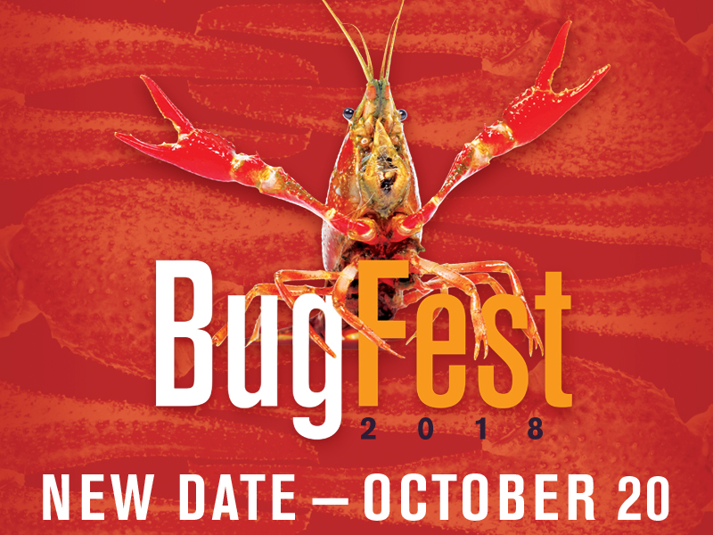 BugFest 2018. New date - October 20