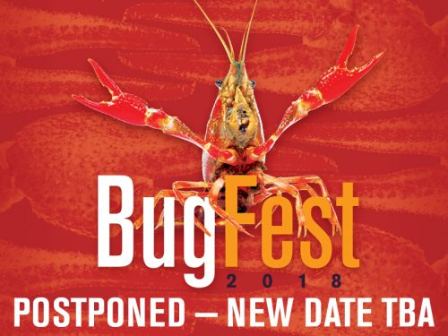 Crayfish featured at N.C. Museum of Natural Sciences' BugFest, Sept. 15. Why?