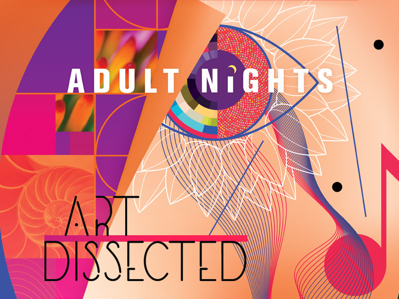 Adult Night: Art Dissected
