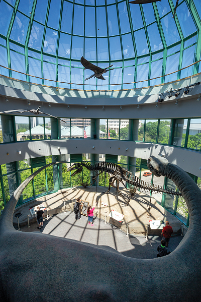 The iconic inside of the Acro Dome! You can see the Acrocanthosaurus skeleton in this shot.
