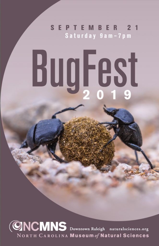 BugFest 2019 poster image