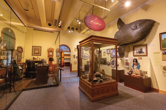 Full of taxidermy and a glimpse into the past of a Museum. The Nature Explorer exhibit is on the 3rd floor of the NEC