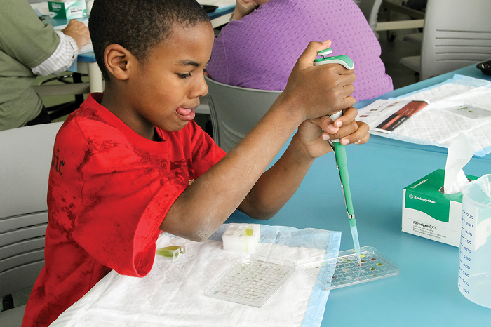 A young boy, concentrated with his tongue out, uses a pipette to experiment all by himself!