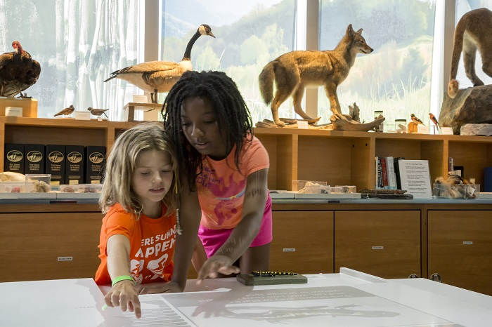 Two young girls share a moment of scientific discovery as they explore the Naturalist Center's interactive tables.