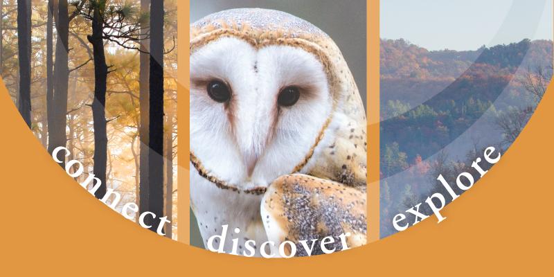 connect | discover | explore