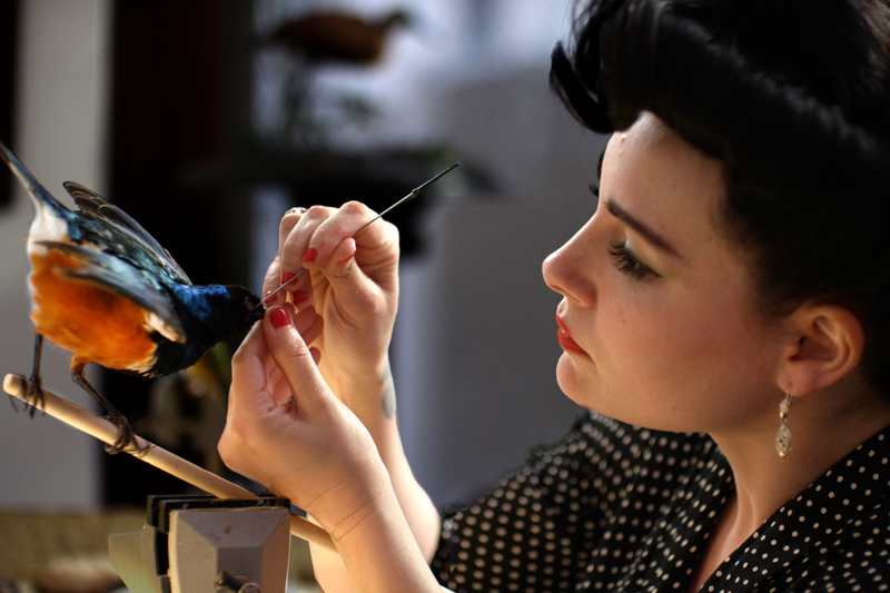 Woman working on taxidermied bird.