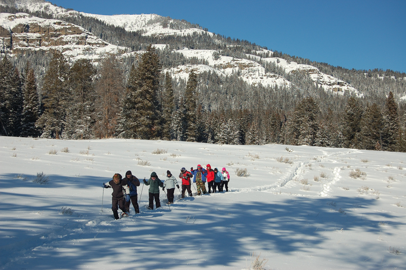 Group snowshoeing down a hill near Pebble Creek.