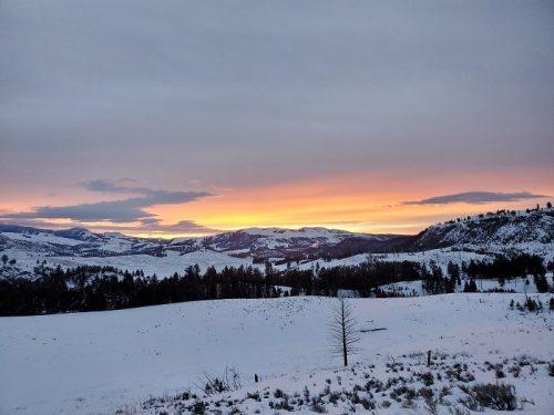 11 Educators Trek Yellowstone with NCMNS!
