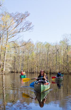 Paddling Devil's Gut by canoe