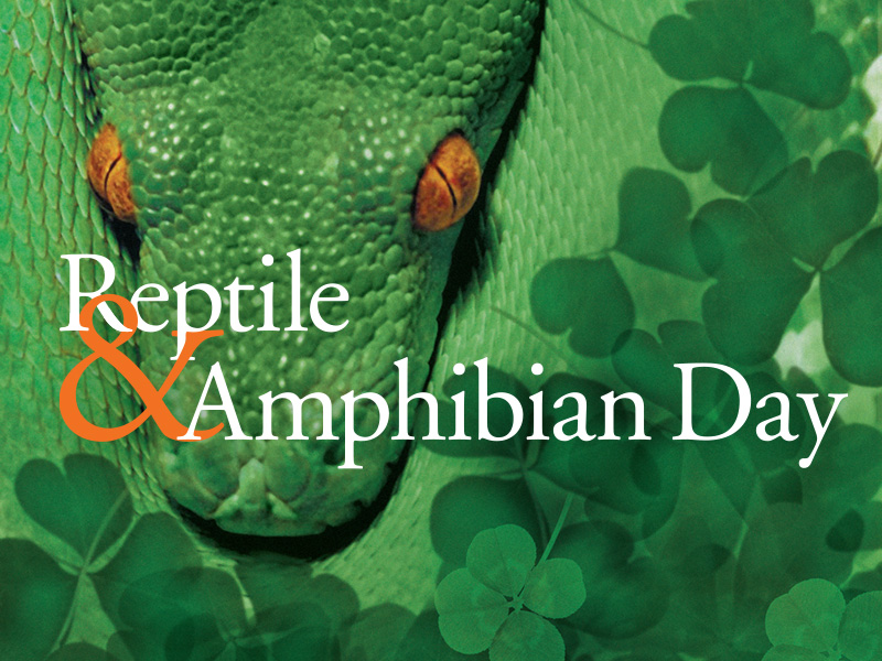 Reptile and Amphibian Day