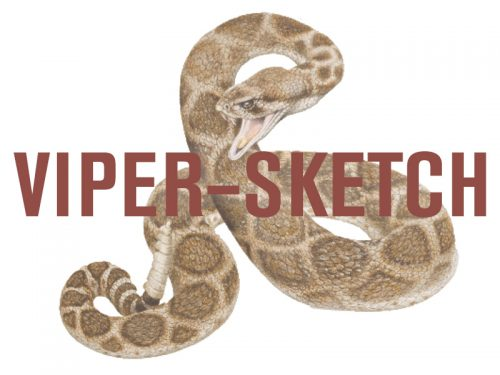 Enter the Museum's Viper Illustration Contest for Kids