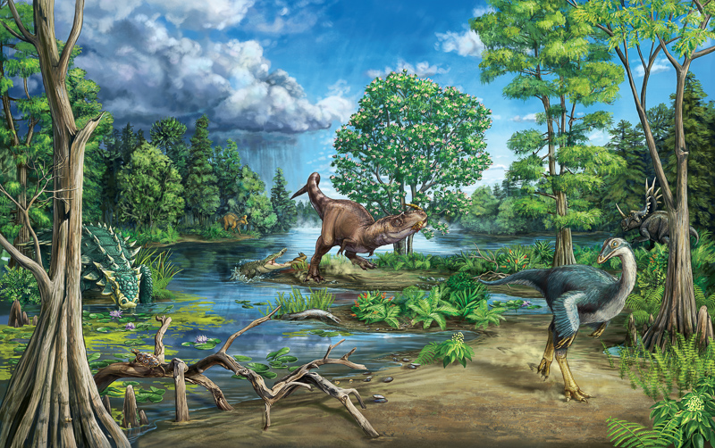 An assortment of dinosaurs in their environment. Illustration by Danielle Dufault.