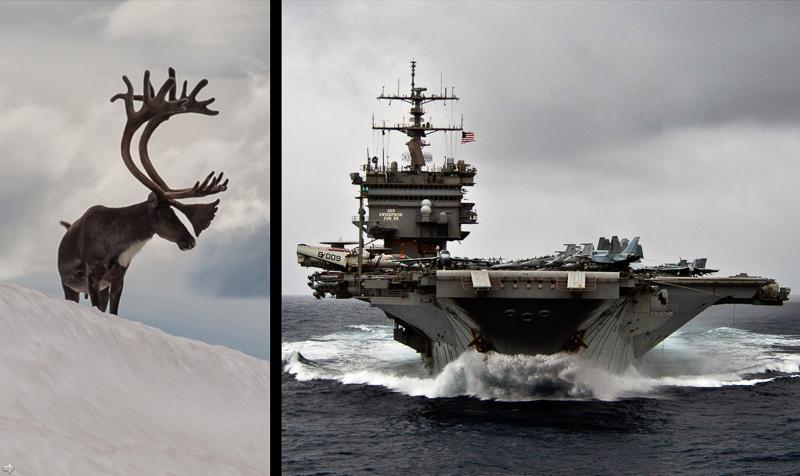 Reindeer and warship