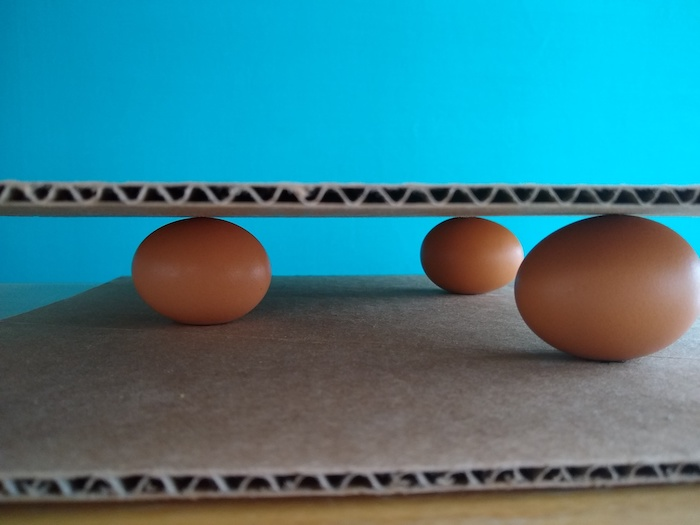Eggs rest on the cardboard.