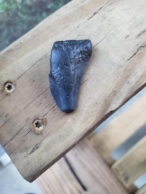 A small black tooth-looking item sits on a wooden board.