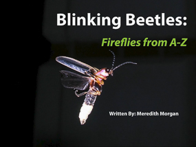 Blinking Beetles: Fireflies From A to Z. Written by Meredith Morgan.
