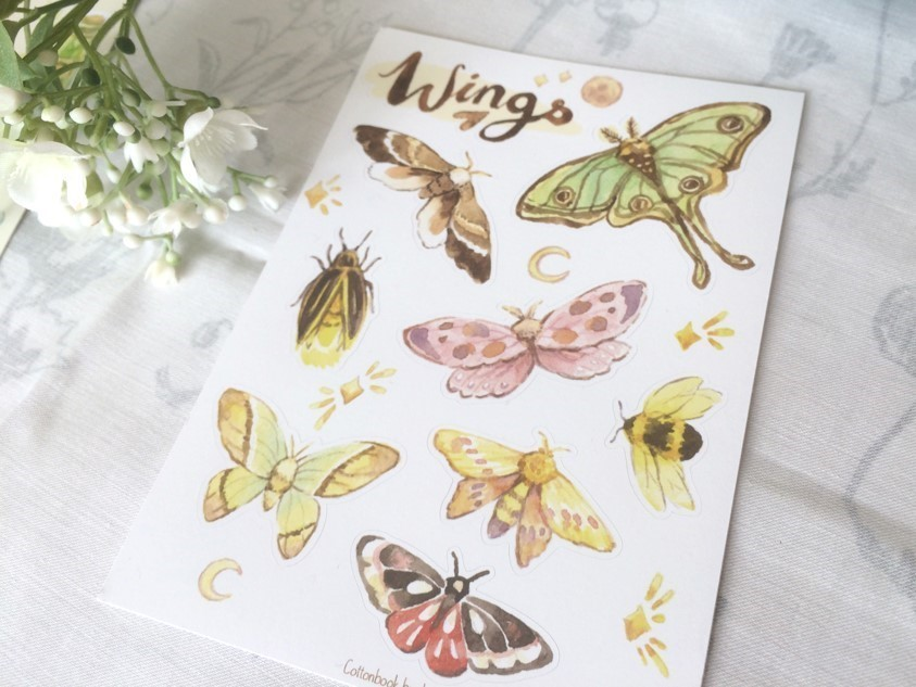 A Zine with drawings of butterflies