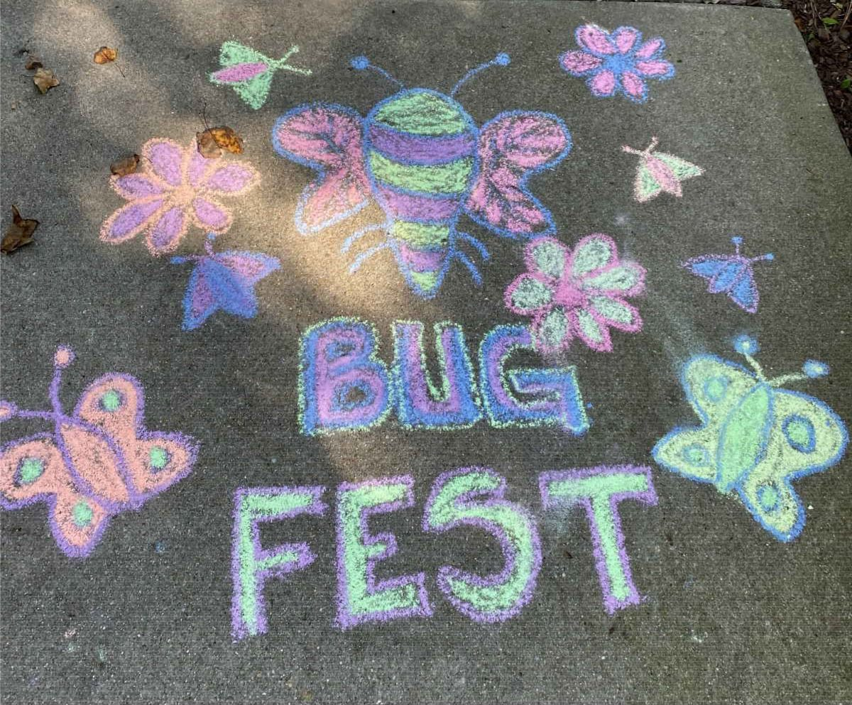 BugFest Bugs out of chalk