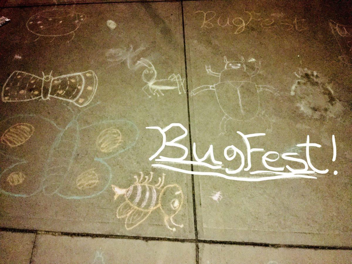 BugFest and bugs in sidewalk chalk