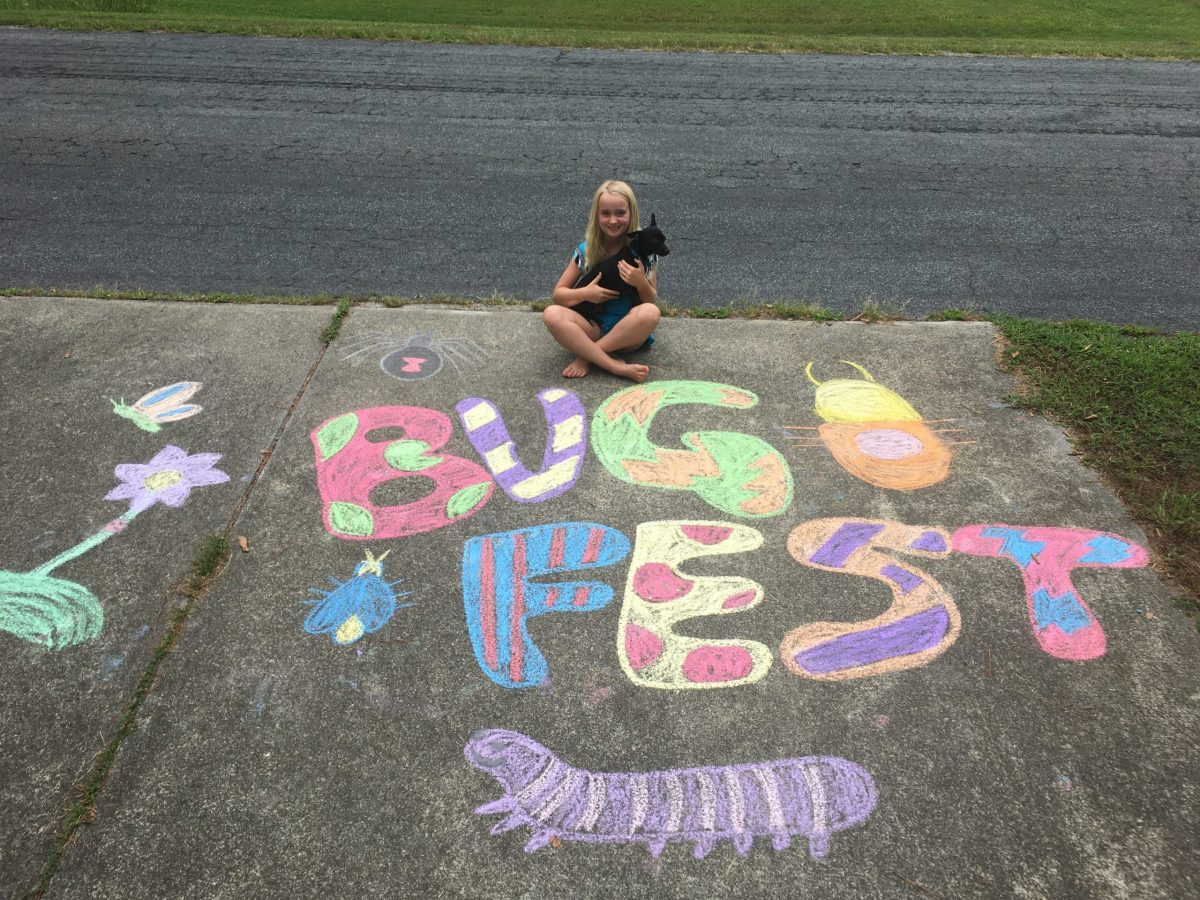 BugFest in chalk with a little girl