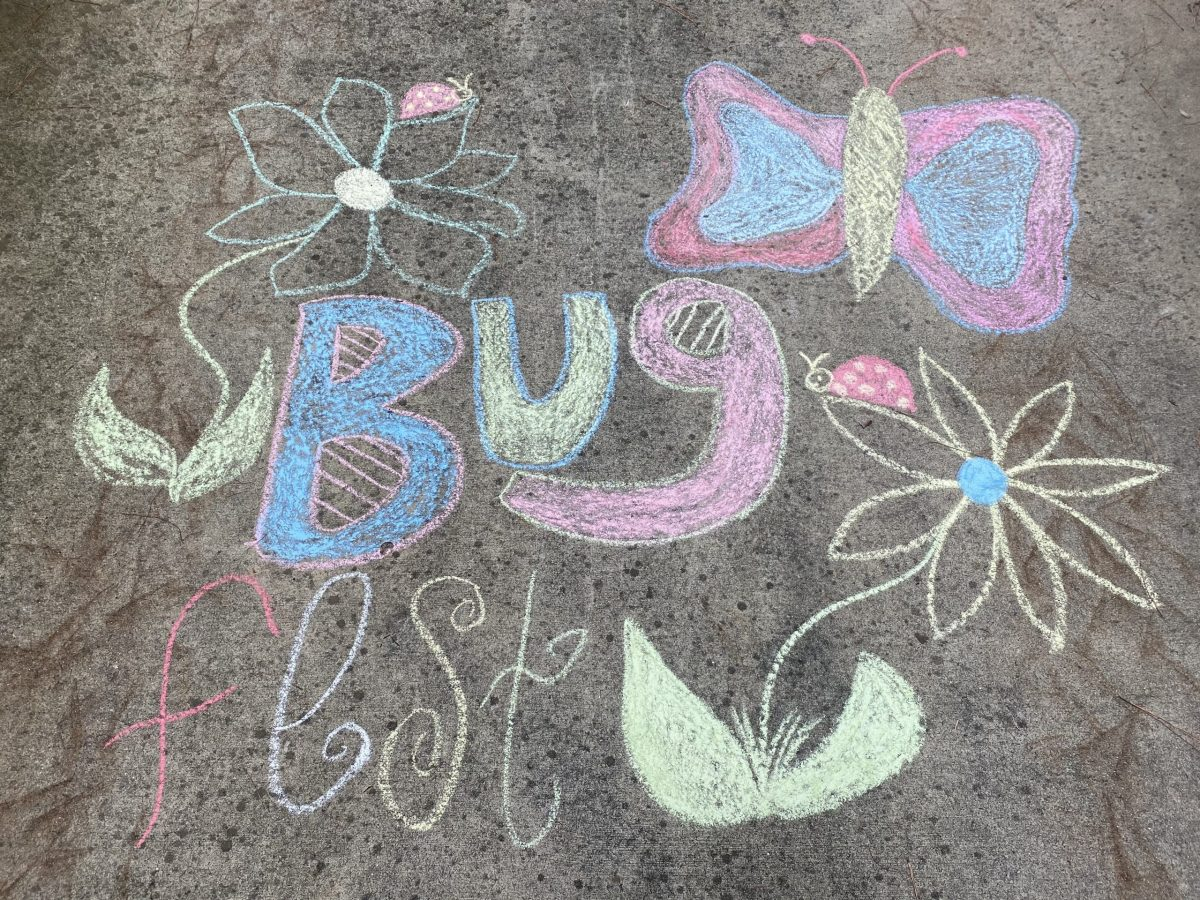 chalk bugfest with flowers and a butterfly