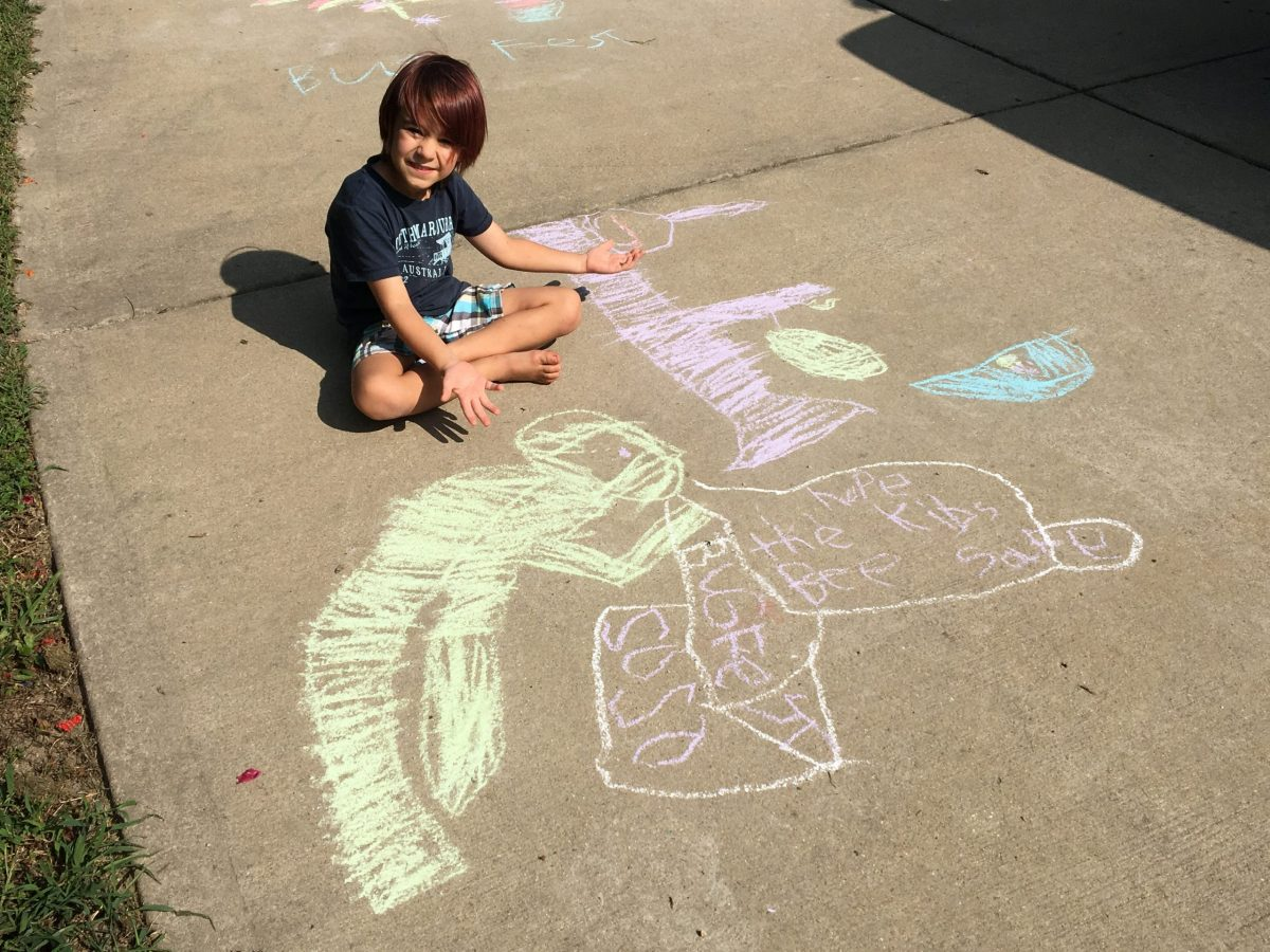 a little boy with chalk bugs