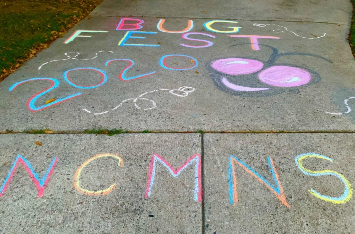 Chalk bugfest 2020 with a bug face