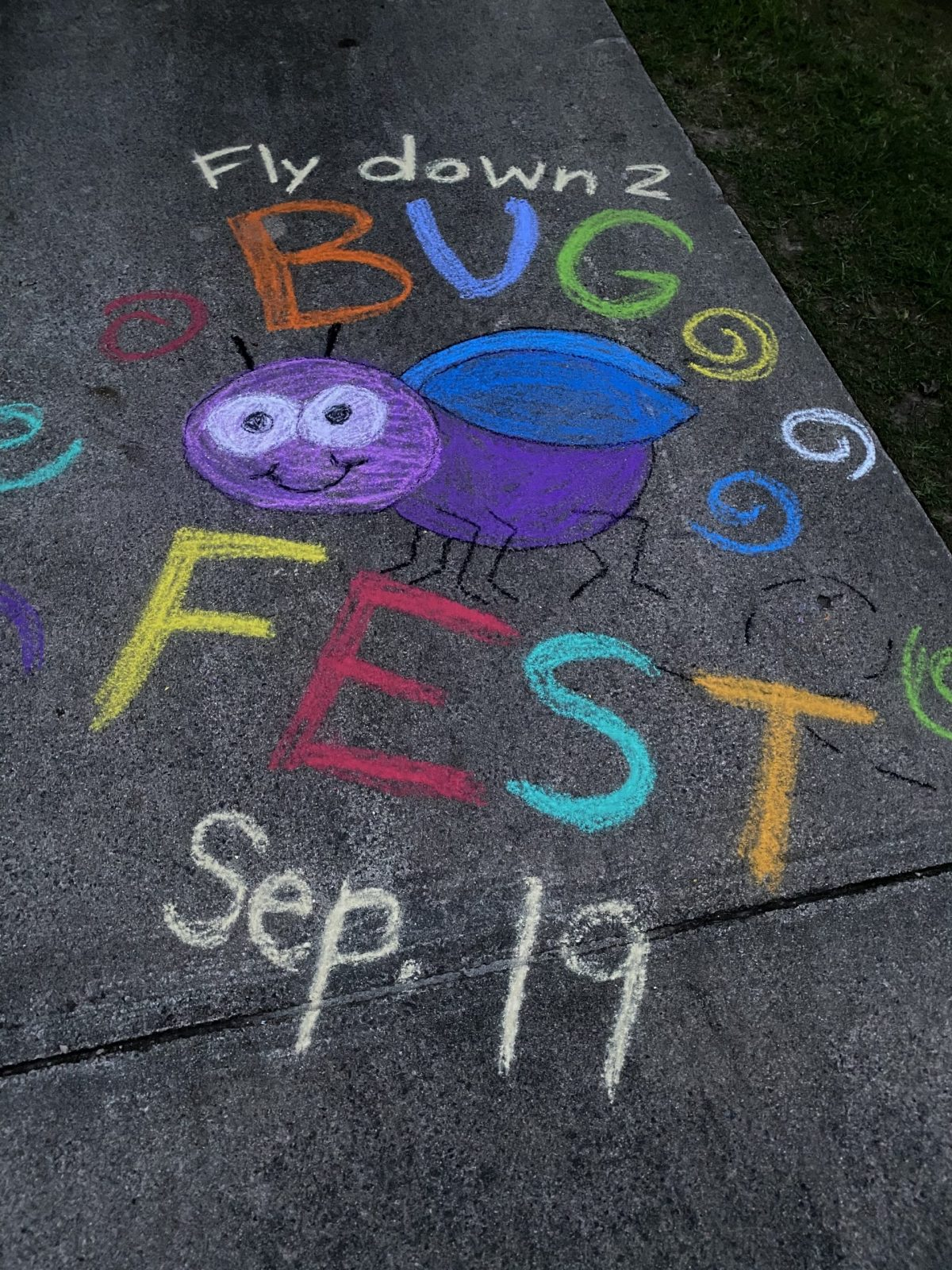 A colorful bug in chalk that says fly down to bugfest
