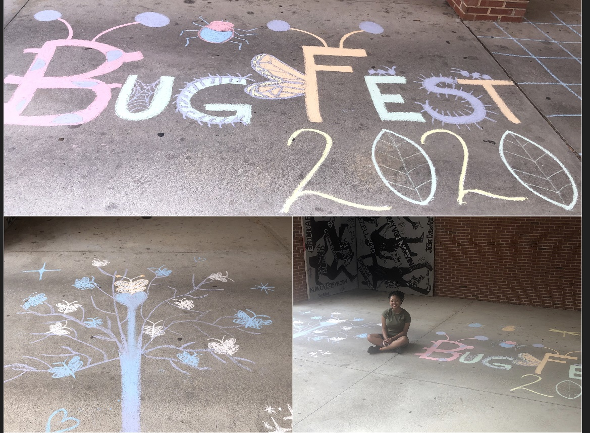 three bug drawings, a bugfest, a tree and a girl with both