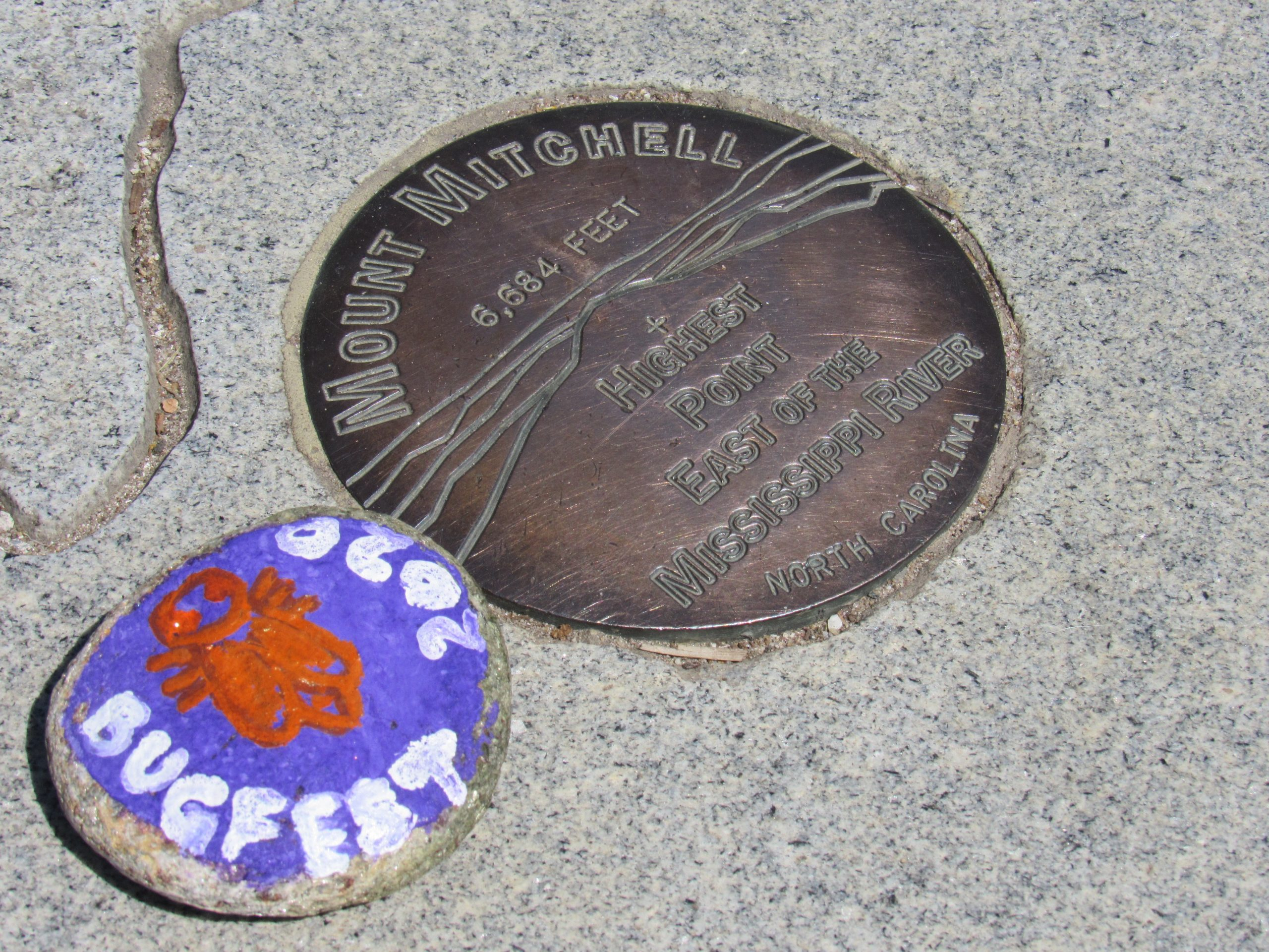 A stone painted with BugFest left on the top of Mt. Mitchell